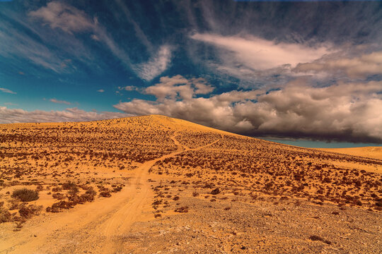 Beautiful desert on Fuerteventura Island, Canary , Spain.