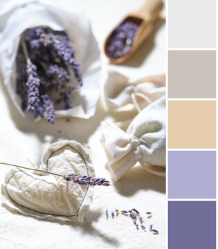 Color matching palette from Close-up on dry lavender flowers in white tracing paper. Hand made lavender sachets on cotton tablecloth,. Low impact rustic decorations Wooden scoop with dry flowers.