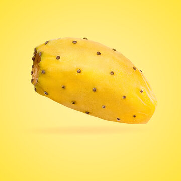 Isolated opuntia fruits with shadow for packaging and advertisement. Full depth of field. Clip art image for package design.