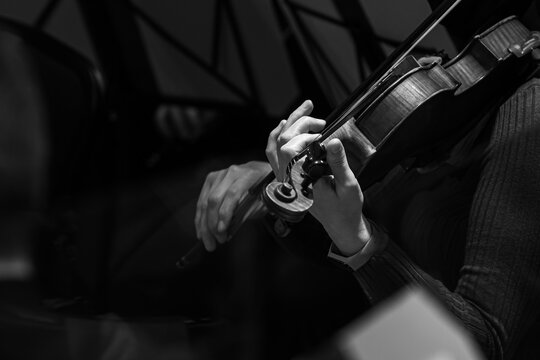 Hands of a musician playing the violin in black and white