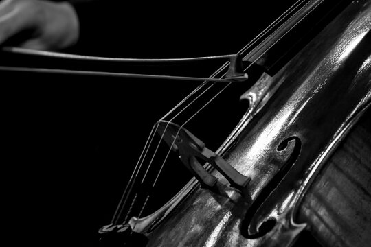 Close-up of bow on cello strings in black and white