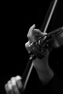 Musician's fingers on violin strings close-up in black and white