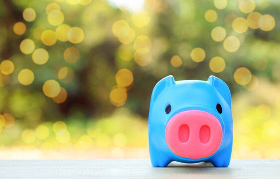 Savings concept Piggy bank collecting coins on natural blurred background