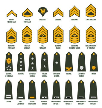 US army enlisted ranks chevrons and insignia. America military service soldiers, officers and command shoulder marks. Private, sergeant and general, captain, lieutenant and major rank slides vector