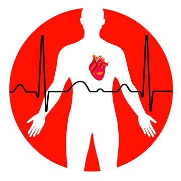 Heart - 5