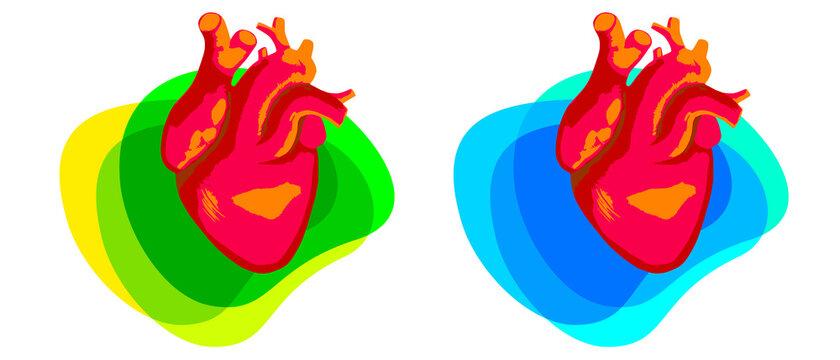 Heart - 7