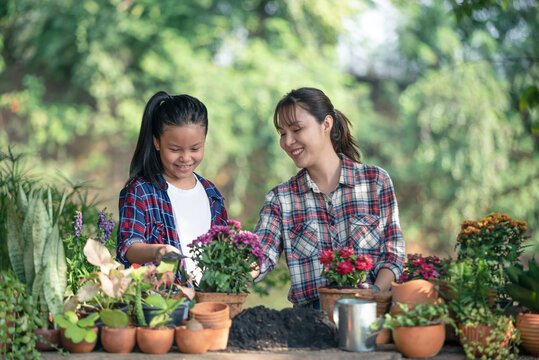 Lovely teenage girl helps her mother pant the flower. Mom and her daughter engaged in gardening near window at home in weekend. Family having a happy time doing thing together.