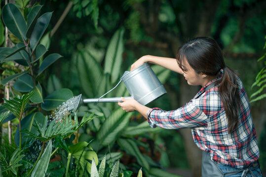Asian beautiful young woman gardening outside in summer nature