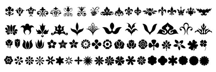 Obraz Swirl ornament stroke. Ornamental curls, swirls divider and filigree ornaments vector illustration set - fototapety do salonu
