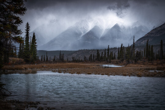 Moody Autumn morning in the Kootenay Plains as snow squalls were blowing about in the peaks of the Canadian Rockies in Alberta.