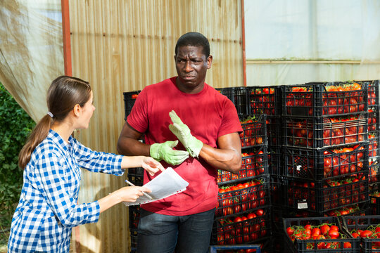 Disgruntled woman manager and African man warehouse worker talking in greenhouse during tomato harvesting