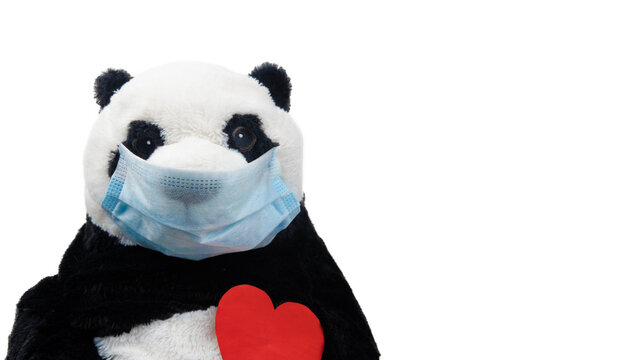 A plush toy in a medical mask on a solid background. A panda as a gift. Greeting card