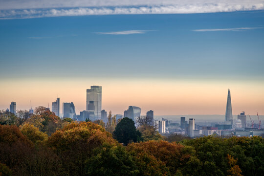 Woodland on Hampstead Heath in autumn, and City of London financial district skyline, Highgate, London