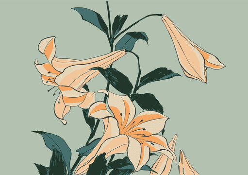 Trumpet Lilies Japanese Woodblock Print Style Vector Illustration