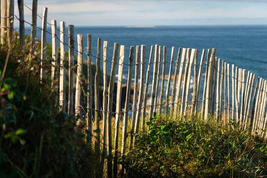 Coast near Pointe de Corsen on a sunny day in summer