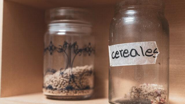 legumbre y semillas