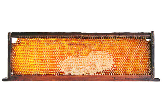 Yellow honeycomb in wood frame