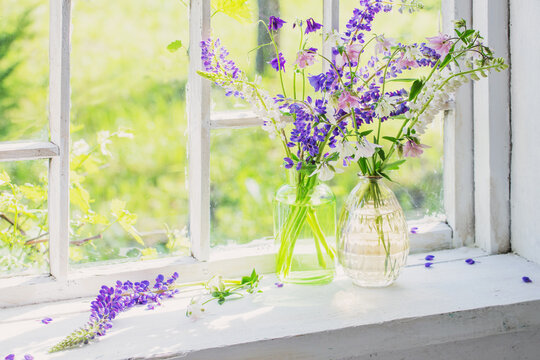 summer flowers in vase on windowsill in sunlight