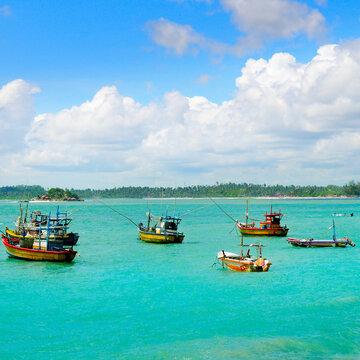 Fisherman's boats, Weligama, Sri Lanka