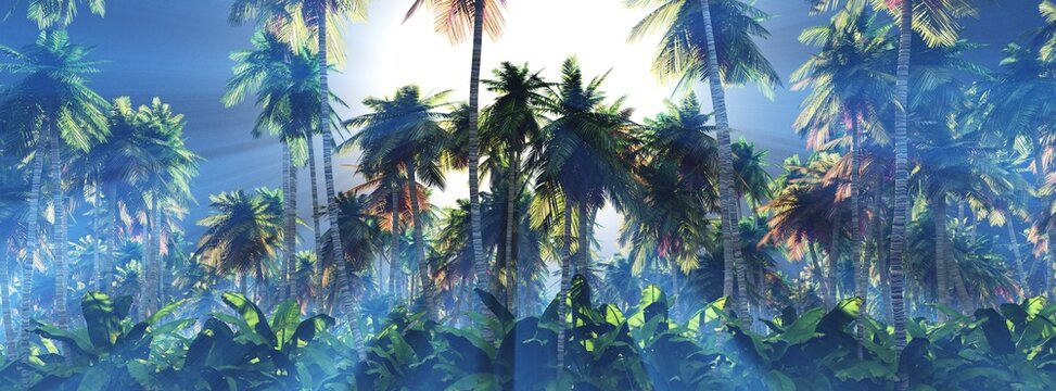 Palm trees in the sun, a grove of palm trees in the morning in the fog, sunlight in the branches of palm trees, 3D rendering