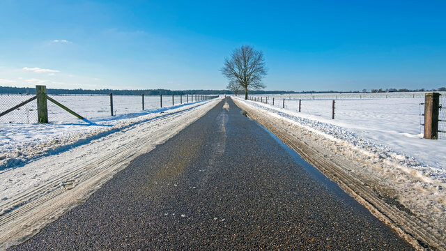 Dutch winter landscape in the countryside in the Netherlands