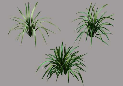 grass icons isolated on grey background