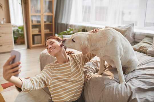 Warm toned portrait of happy young woman taking selfie with dog giving kisses in cozy home interior lit by sunlight, copy space