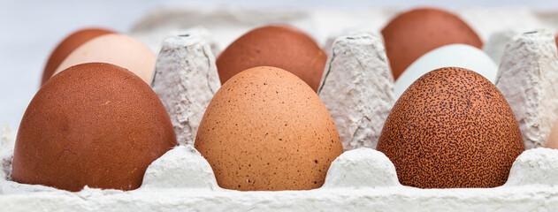 Farm fresh organic brown, spotted, pink, white and creme colored backyard chicken eggs texture in...