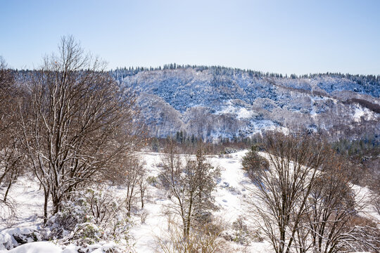 Image of a snow covered hillside