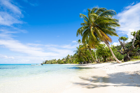 Summer vacation at a tropical beach in the South Seas