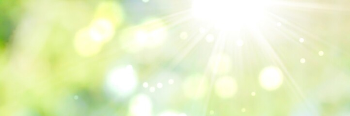 Spring background - abstract banner - green blurred bokeh lights with sunbeams