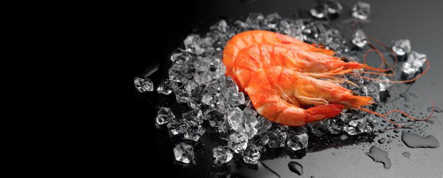 Shrimps. Fresh Prawns on a Black Background. Seafood on crashed ice, dark background, preparing healthy food, cooking, diet, nutrition concept. Served food, preparing healthy food, cooking, diet.