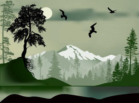 fir-pine-see-seagull-mountain-1220-b