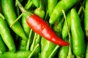 Top view of one red hot chili pepper among a lot of green