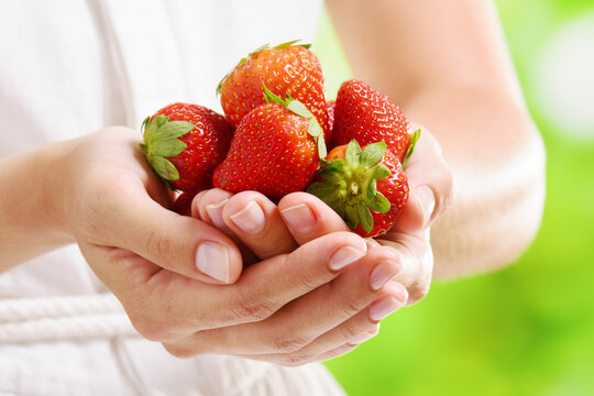 Closeup view of fresh strawberries in hands of a woman