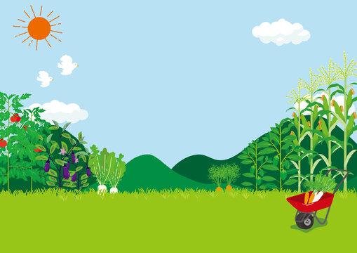 畑の風景 イラスト