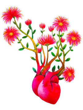 love red pink heart flower mind art abstract watercolor painting illustration design white isolated