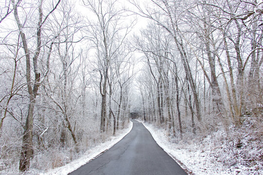 Driving along a single-lane back road surrounded by snow and winter forest.