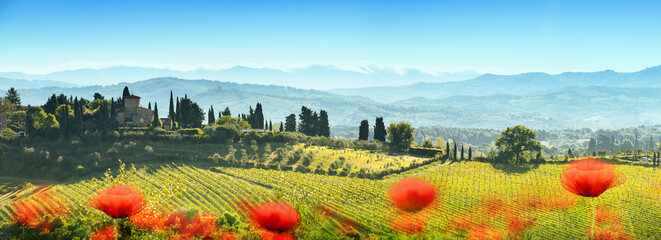 Beautiful Landscape with Poppies Flowers. Italy Tuscany