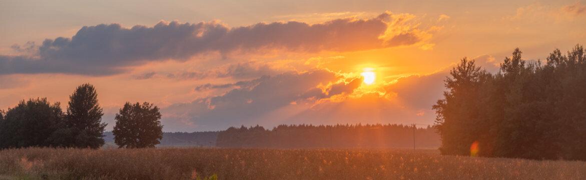 sunset over summer field