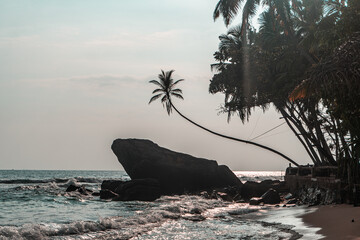 Duża skała na tle palm i oceanu, tropikalne wybrzeże.