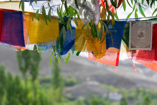 Buddhist religious flags hanging at Mulbekh, ladakh. Himalayan mountains in background, Ladakh, Jammu and Kashmir, India