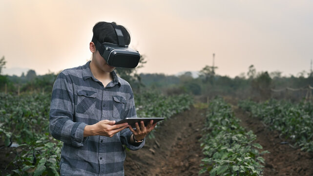 Smart farmer man wearing visual reality glasses technology and using digital tablet while standing in agriculture farm.