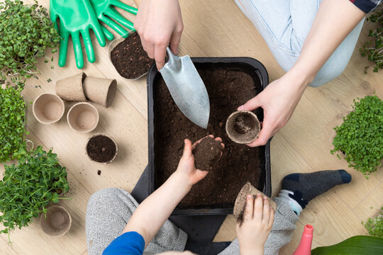 Top view of mother and son preparing soil for seeds. Pouring soil in a pot with shovel and hand. Hobbies at home horticulture.