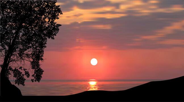 large single tree on sunset background