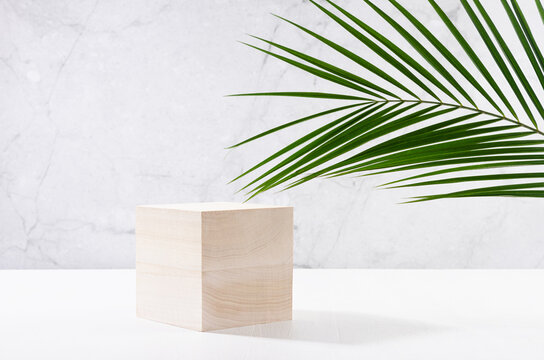 Summer modern showcase with cube wooden podium with green palm leaf in sunlight, shadow on white board, grey marble wall for cosmetics product display.
