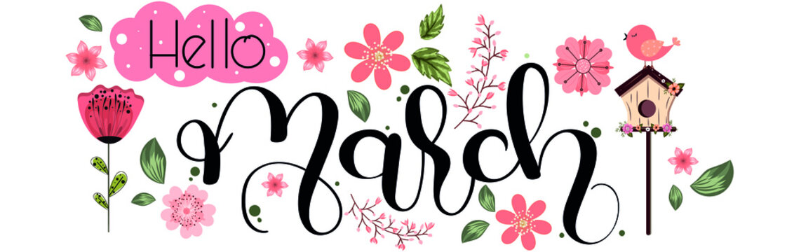 Hello MARCH. March month text hand lettering with flowers, birds and leaves. Illustration march