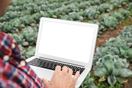 Man using laptop with blank screen in field, closeup. Agriculture technology