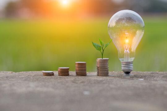 light bulb with money