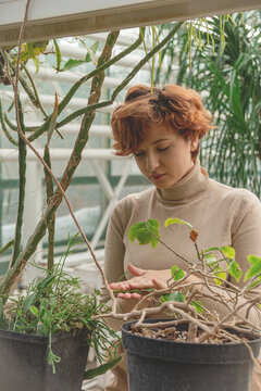 A beautiful plus size young woman takes care of plants green plants in the greenhouse. Cottagecore style